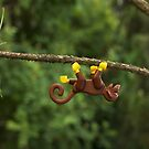 Monkeying Around by thereeljames