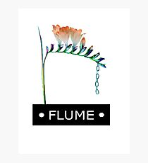 FLUME SKIN COMPANION EP  Photographic Print