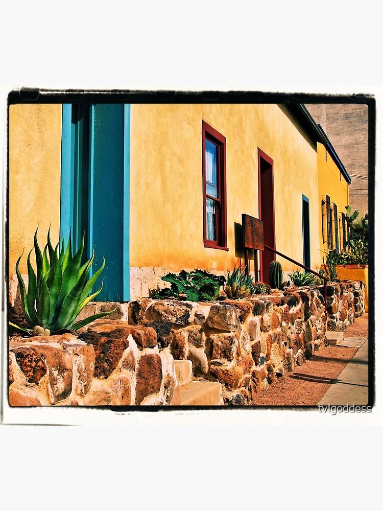 Altstadt von Tucson von tvlgoddess