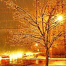 """A Snowy Evening in Knoxville"" (a series, no.3)... prints and products by Bob Hall©"