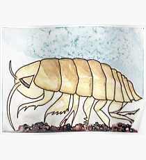 Isopod Starts with I Poster