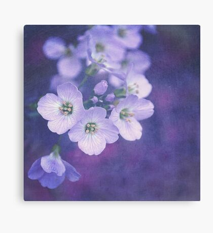 This enchanted evening Canvas Print