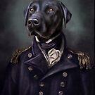 Jake the black Labrador by carpo17