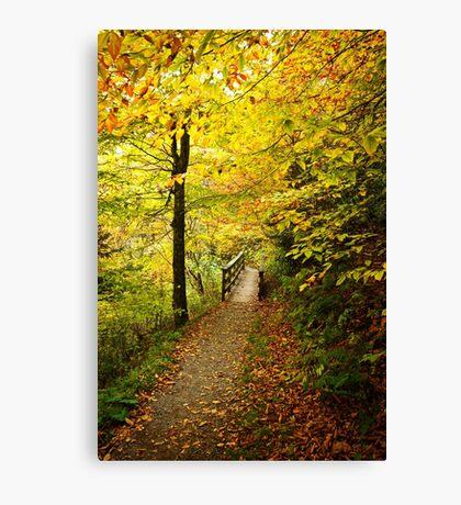 Peaceful Stroll Canvas Print