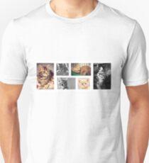 Kittens!!! T-Shirt