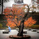 Kanazawa Castle, Japan by Richard Mason