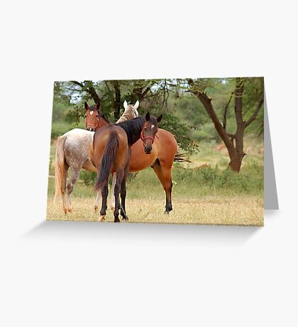 LIKE THE THREE MUSKETEERS, always together Greeting Card