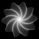Polar Flower 003 by Rupert Russell