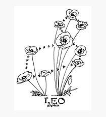 Floral Constellation - Leo Photographic Print