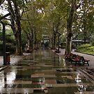 Shanghai Park by BILL JOSEPH
