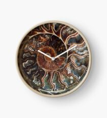 Fossilized Shell Clock