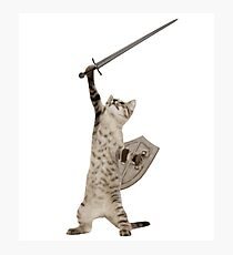 Heroic Warrior Knight Cat Photographic Print