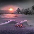 Dreams by Igor Zenin