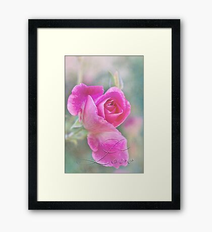 Romantic rose in a mist with love Framed Print