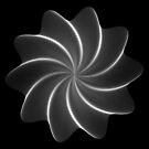 Polar Flower 005 by Rupert Russell
