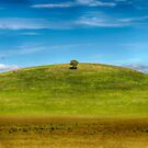 One Tree Hill by Mark Higgins