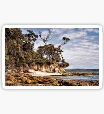 Murray Beach 2016 March Sticker