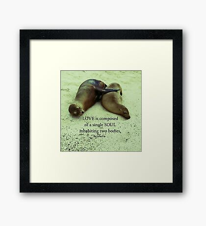Love soulmates Aristotle quote Framed Print