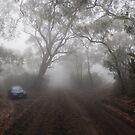 The Foggy Road to Anvil Rock Lookout by Rod Kashubin