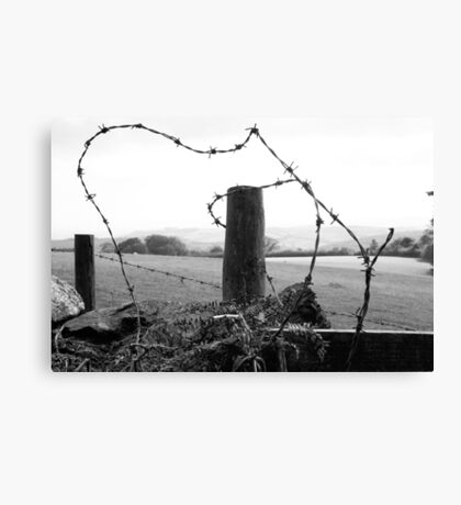 barb barb,,,barbed wire  Canvas Print
