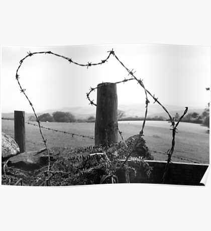 barb barb,,,barbed wire  Poster