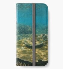 A green sea turtle underwater over coral reef iPhone Wallet/Case/Skin