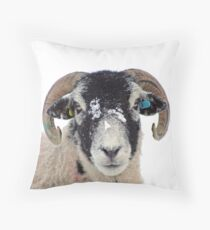Swaledale Sheep in Winter Snow Throw Pillow