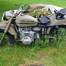 Motorbike returned to nature by Arie Koene