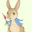 Peter Rabbit by Katie Corrigan
