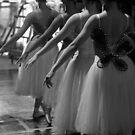 ballerinas by vgursabia