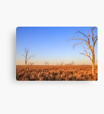 Dry Lake Pinaroo  Canvas Print