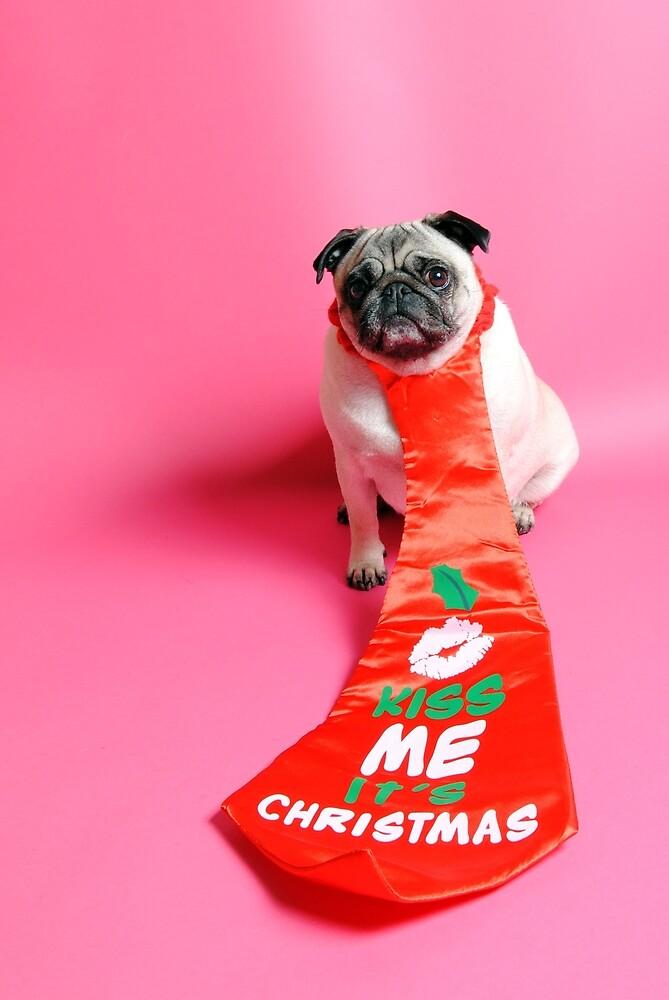 Kiss Me its Christmas by NJMphotography