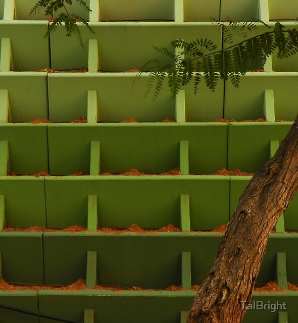 Parallel Universe + Tree by TalBright