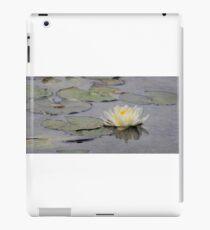 The lotus flower of Bethesda Fountain iPad Case/Skin