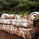 Yard Couch! by zepfhyr