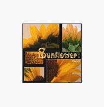 Sunflower Macro Collage Scrapbook Page Art Board