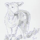 Lamb Drawing - black and white sketch by MikeJory
