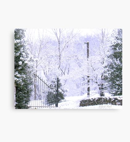 """White Side of the Gate""... prints and products Canvas Print"