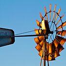 The Windmill by Su Walker