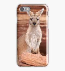 """Euro ~ """"Who's looking at who"""" iPhone Case/Skin"""
