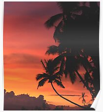 Coconut Trees Silhouette at Dusk Poster