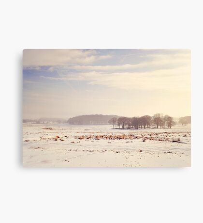 Snowy valley Canvas Print