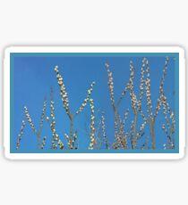Blue Willow Sky Sticker