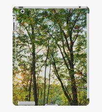 Pennsylvania Landscape #2 iPad Case/Skin