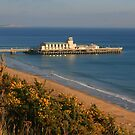 Pier from the West Cliff by RedHillDigital