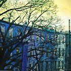 Brooklyn Blues by Gilda Axelrod
