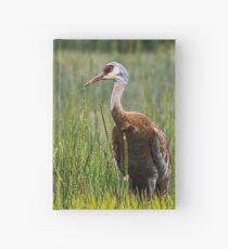 Sandhill Crane Hardcover Journal