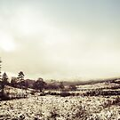 West Highlands Snow by humblebeeabroad