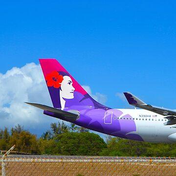 Hawaiian A330-200 Tail by mattjwett773