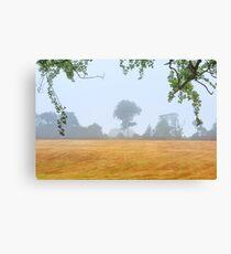 Tree  Co Antrim  Northern Ireland Canvas Print